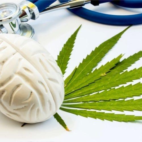 Cognitive Cannabis