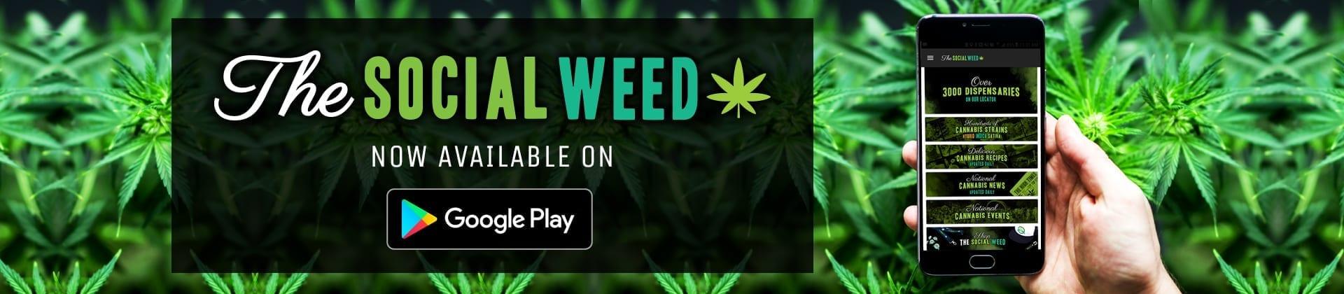 The Social Weed APP