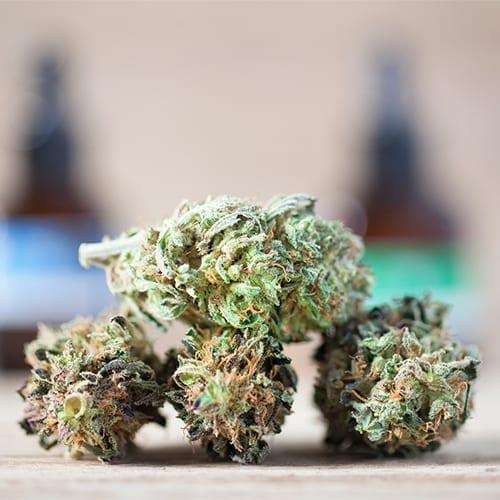 cannabis nugs